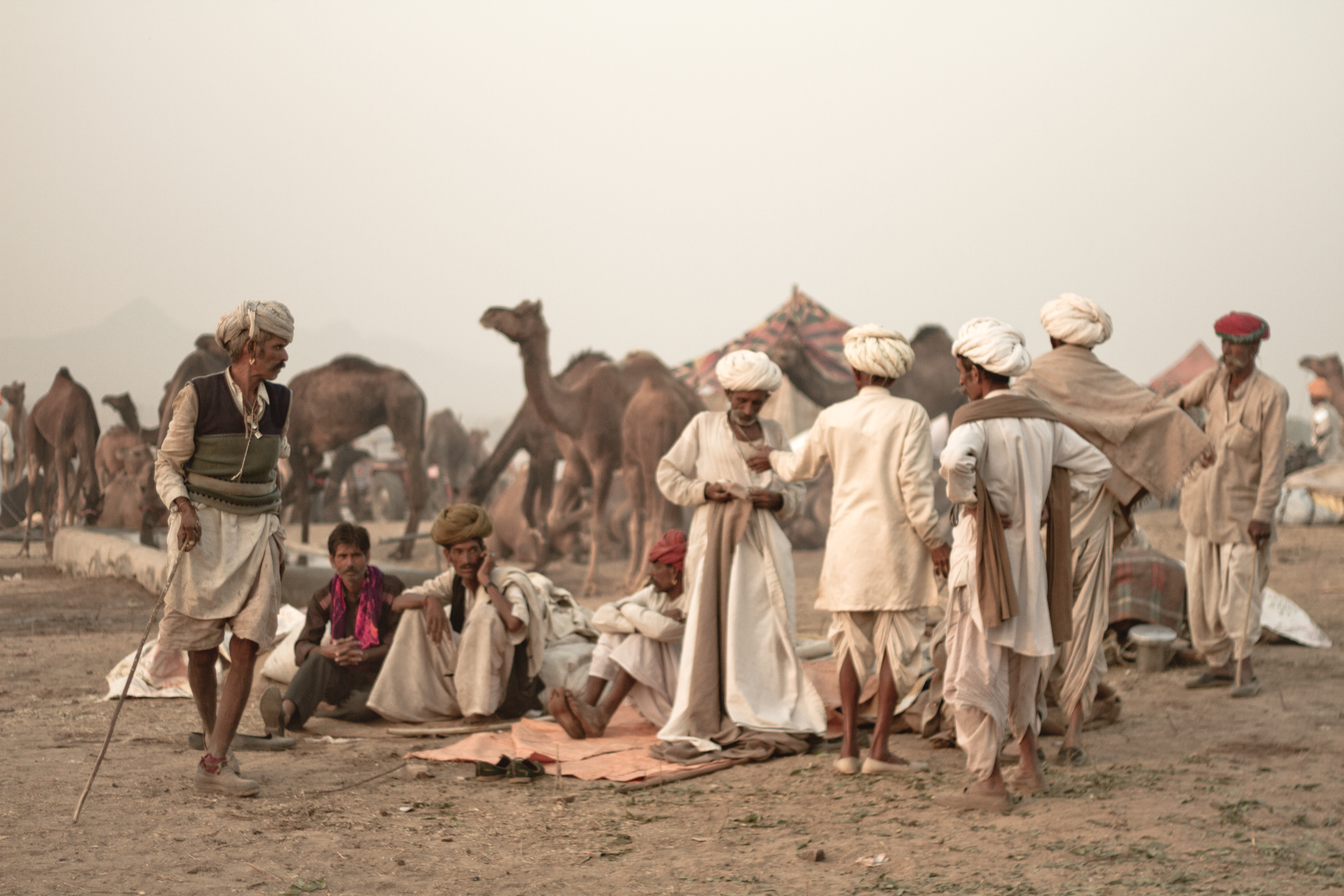 Traders, Camel Fair, India 2013