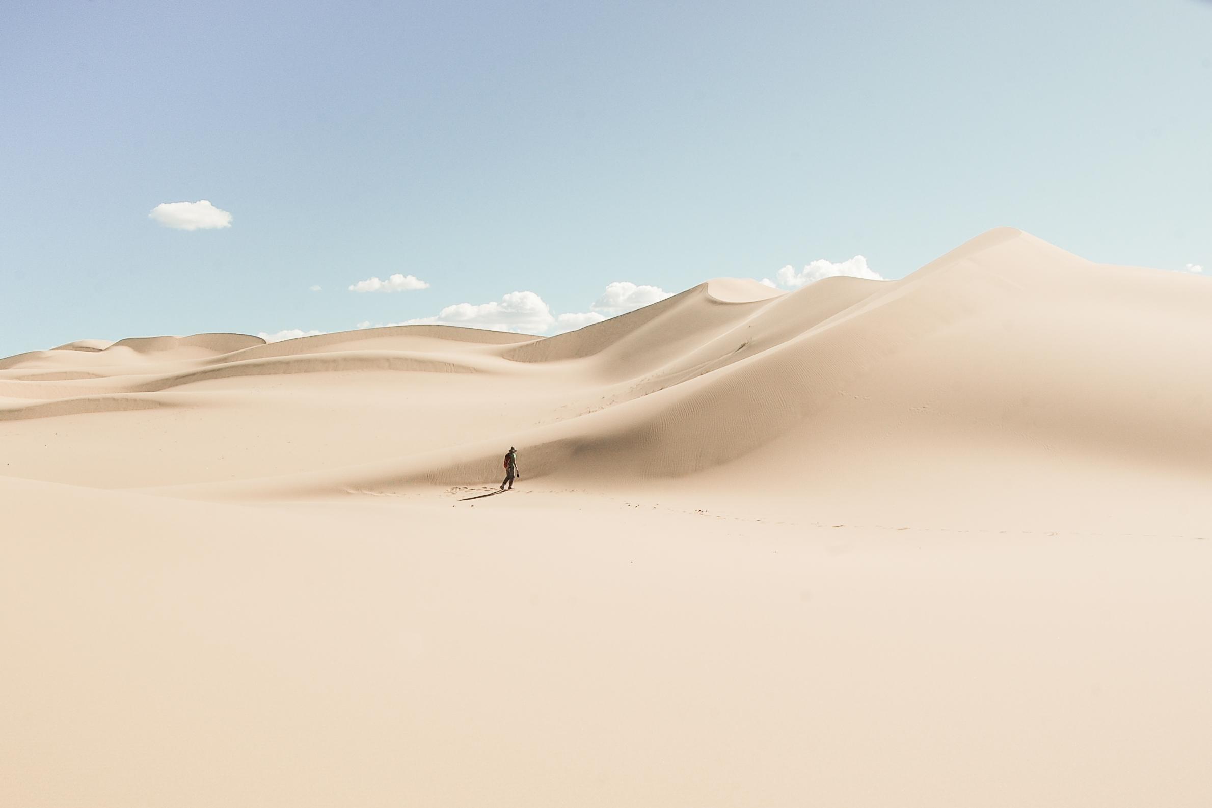 Walk alone, Gobi Desert, Mongolia 2010